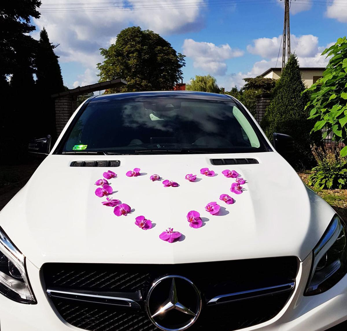 Mercedes do wynajęcia na wesele